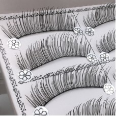 10 pairs of cross-border sources of natural long and transparent stalked false eyelashes plus long curled eyelashes eyelashlist