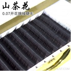 0.07 Thickness, Gentle and Thick Camellia Grafted Eyelashes, 8-12mm Long Holiday Grafted Eyelashes eBay