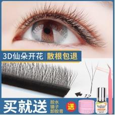 Three-crossfront eyelashes soft hair is not foundured by flowering grafting eyelashes 3D fairy Mao YY eyelashes beauty eyelash store special